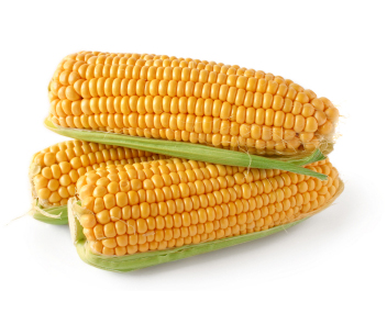 How long to boil corn on the cob